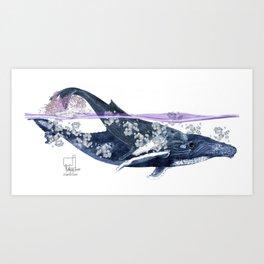 Humpback Mama Art Print