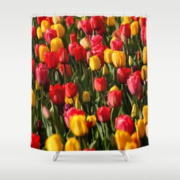 Peace, Love And Tulips Shower Curtain