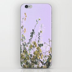 Vibrant Yellow Blooms iPhone & iPod Skin