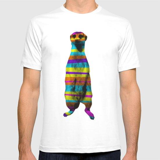 Hakuna Piñata T-shirt