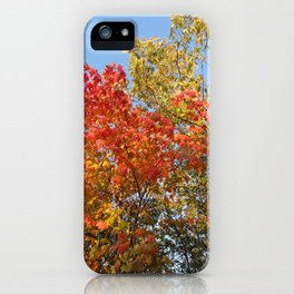 Autumn Leaves II iPhone Case