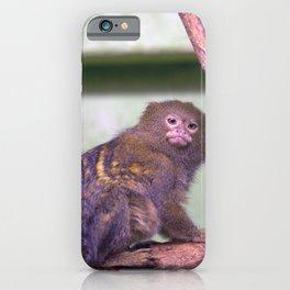 Philadelphia Zoo Series 34 iPhone Case