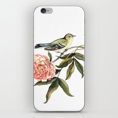 Watercolor illustration with bird and flower iPhone & iPod Skin
