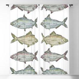 Triple Fish Blackout Curtain