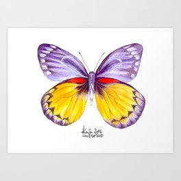 Shady Lavender Art Print