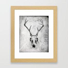 Whitetail Deer Skull (Buck) - 8x10 Tintype Photo Framed Art Print