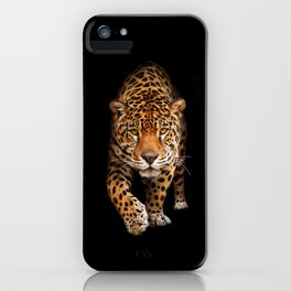Jaguar in darkness - front view iPhone Case