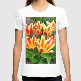 Orange Yellow Tulpis,Spring Flowers T-shirt