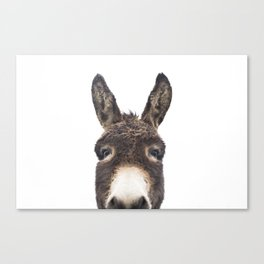 Hey Donkey Canvas Print