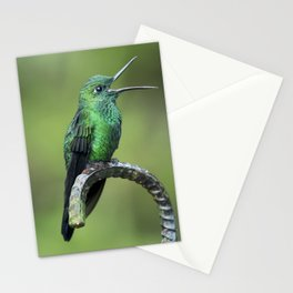 Green-crowned brilliant Hummingbird with open mouth Stationery Cards