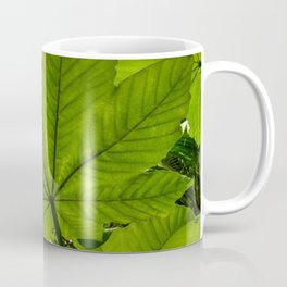 The great Yagrumo tree leaf -  El Yunque rainforest PR Coffee Mug