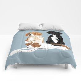 Elvis, Judd and Glory Bea Comforters