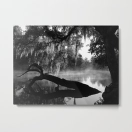 Coolness and Fog on the Withlacoochee River Metal Print