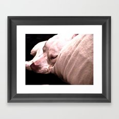 Sup Dawg Framed Art Print