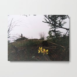 Kelowna, BC Metal Print