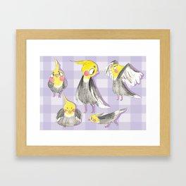 cockatiels! Framed Art Print