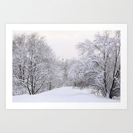 Winter evening in the Moscow forest, Russia Art Print