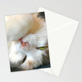 Drowsy Kitty Stationery Cards