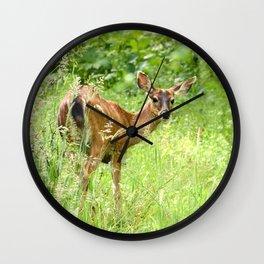 Doe, a Deer Wall Clock