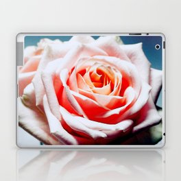 Adorable White and Pink Rose Laptop & iPad Skin