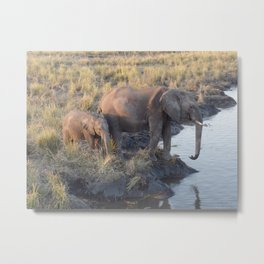 Sun Setting Elephants Metal Print