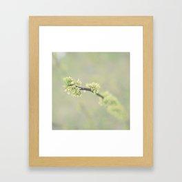 Bein green Framed Art Print