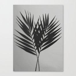 Palm Leaves #5 #foliage #decor #art #society6 Canvas Print