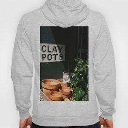 Clay Pot Cat Hoody