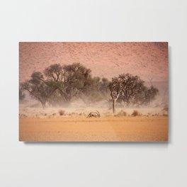 NAMIBIA ... through the storm II Metal Print