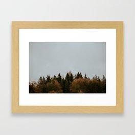 Wild Mountain Thyme Framed Art Print