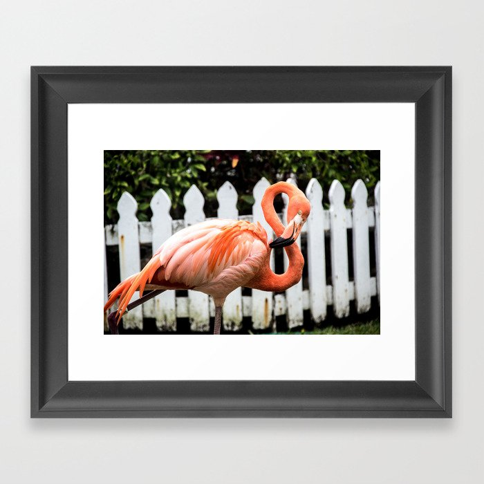 The Number of the Day is Eight... Framed Art Print
