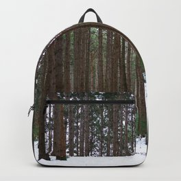 michigan winter Backpack