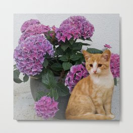 Cat and a Vase of Hydrangea Metal Print