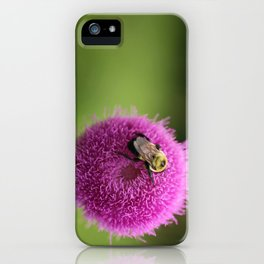 Bumble Bee on Purple Thistle iPhone Case