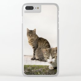 Picture of cats Clear iPhone Case