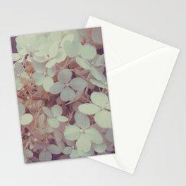 White Flower Bush Stationery Cards