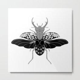 Stag Beetle Print Metal Print