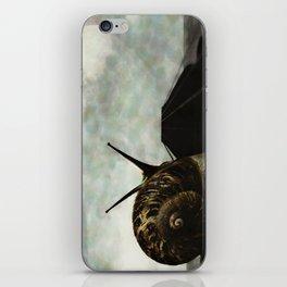 Ballad iPhone Skin