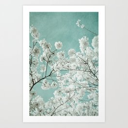 flowering season Art Print