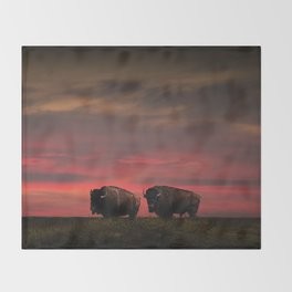 Two American Buffalo Bison at Sunset Throw Blanket