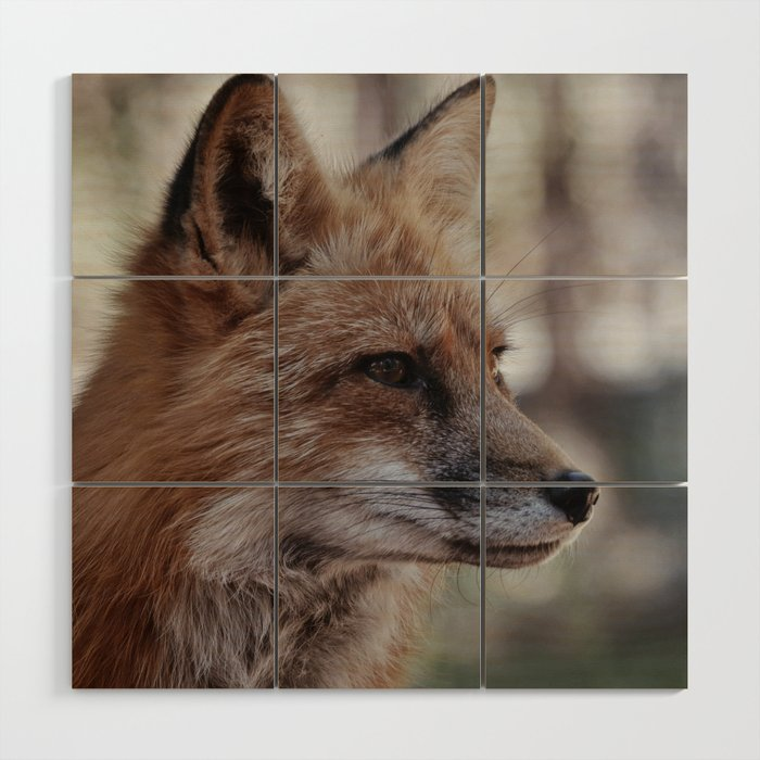 Fox Portrait Wood Wall Art