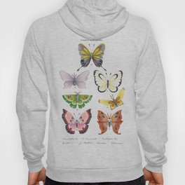 Butterfly Pokémon of the World Hoody