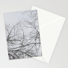 SNOWY BRANCHES Stationery Cards