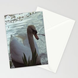 Swans Stationery Cards