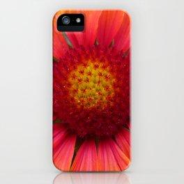 Gaillardia iPhone Case