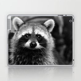 Racoon B & W Laptop & iPad Skin