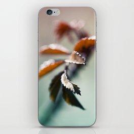 nature colors iPhone Skin