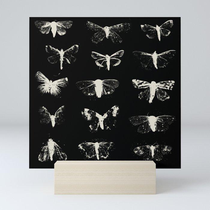moths Mini Art Print