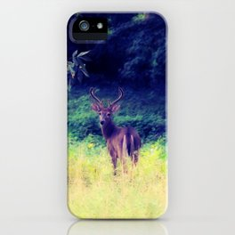 Morning in the Meadow iPhone Case