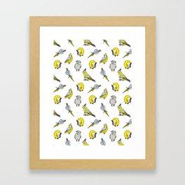 Cockatiel pattern Framed Art Print